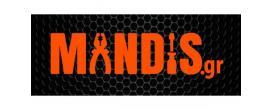 Πληροφορική/IT - Πρακτική άσκηση στην εταιρεία Mandis